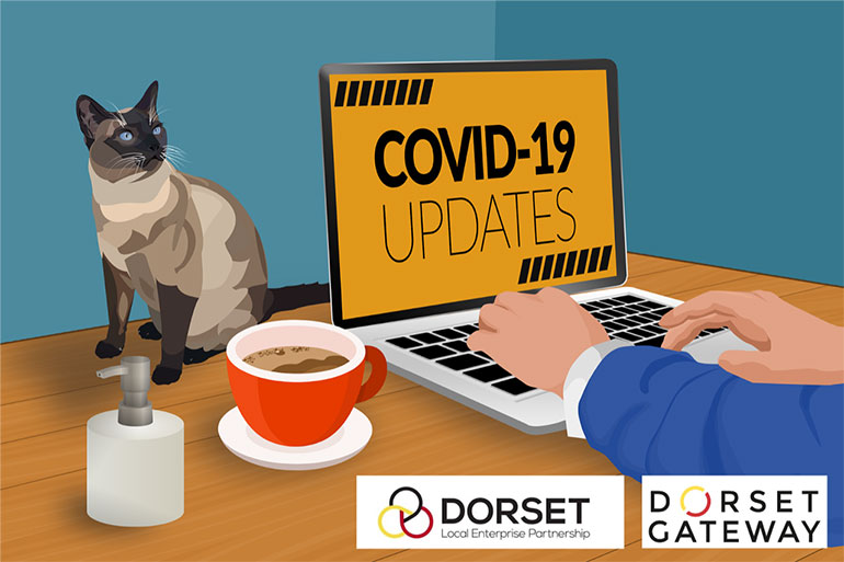 Investing in Dorset's COVID-19 response and recovery