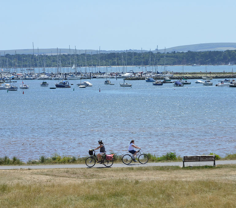 Poole Harbour: project to protect Poole Harbour's habitats
