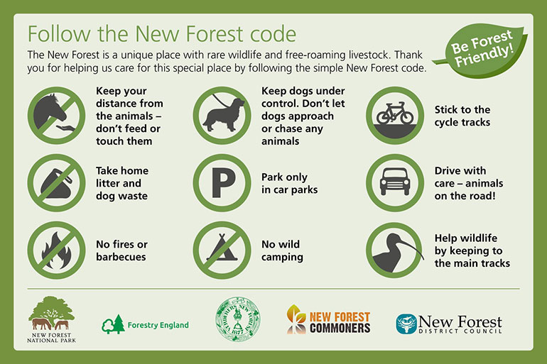 New-Forest-code-logos