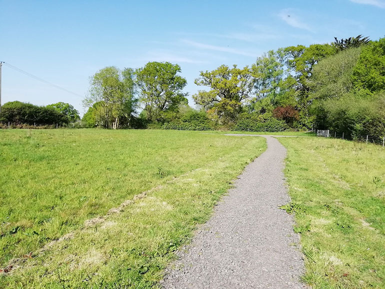 Open space in Wimborne