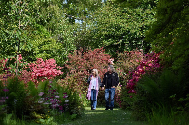 Furzey Gardens is delighting visitors with burst of late-spring colour
