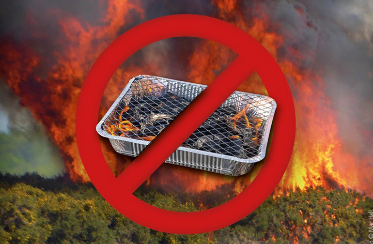 no-bbqs-New-Forest