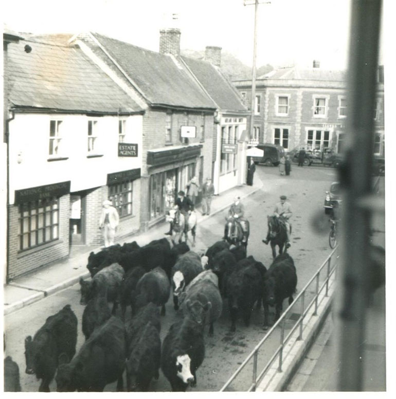 One of the many featured images: Driving Dalgetty's cattle through Fordingbrdige © Peter Harrison