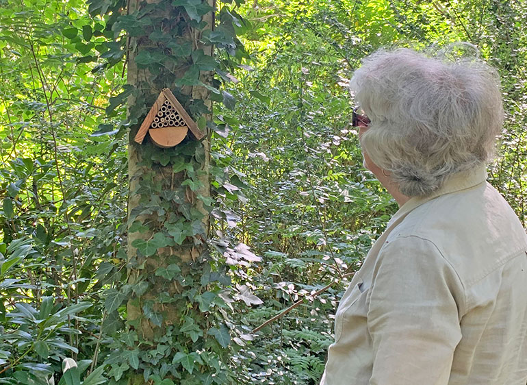 A participant admires the insect hotel