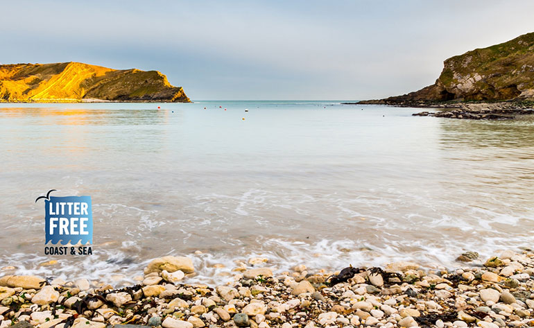 Have your say about the Dorset coast – Lulworth Cove pictured