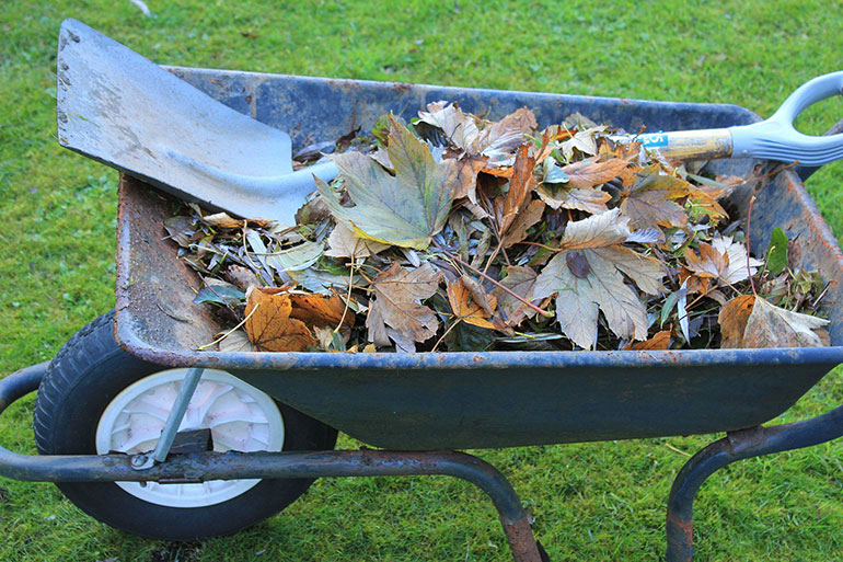 You can sign up now if you live in Bournemouth, Christchurch and Poole for next year's waste collection service