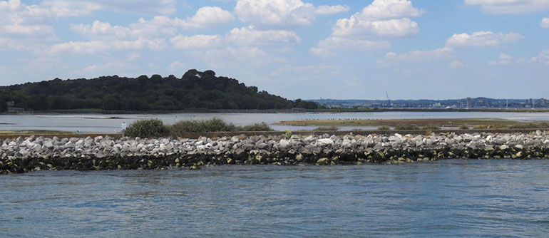 Poole Harbour showing Brownsea Island: byelaws are in place to protect other harbour users, wildlife and the environment