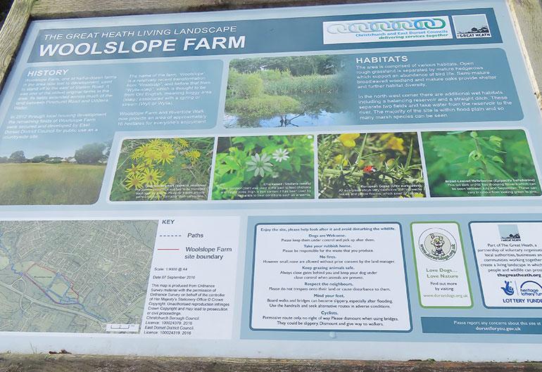 Woolslope Farm West Moors