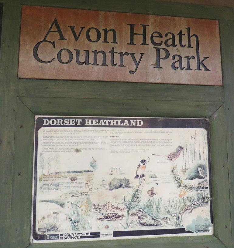 Avon-Heath-Notice-Board