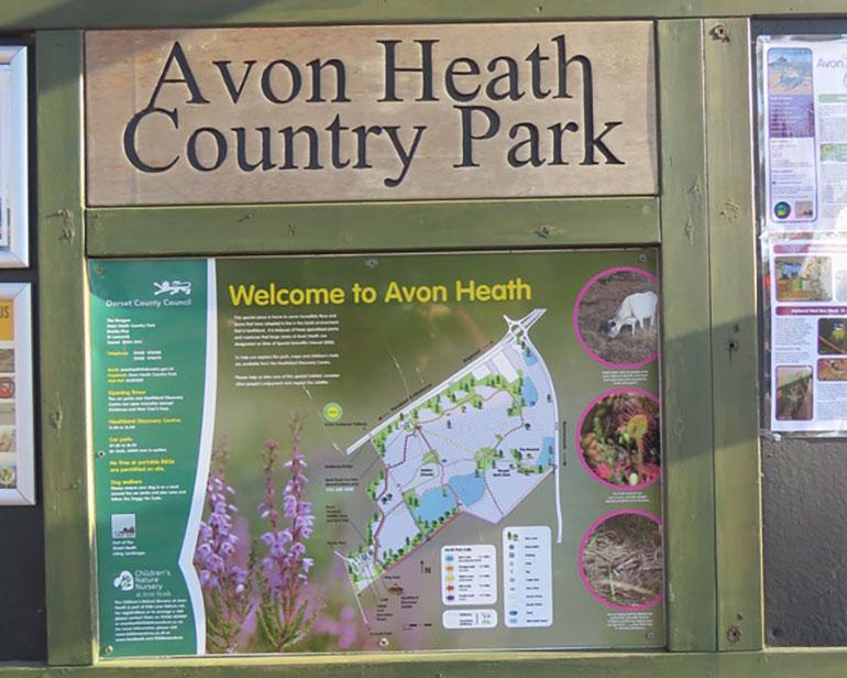 Avon-Heath-sign