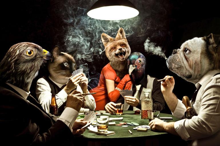 Gambler Animals play poker wild dark composition