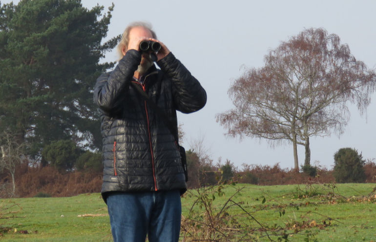 New Forest Walking Festival includes themes such as bird-watching – book online from 6 September
