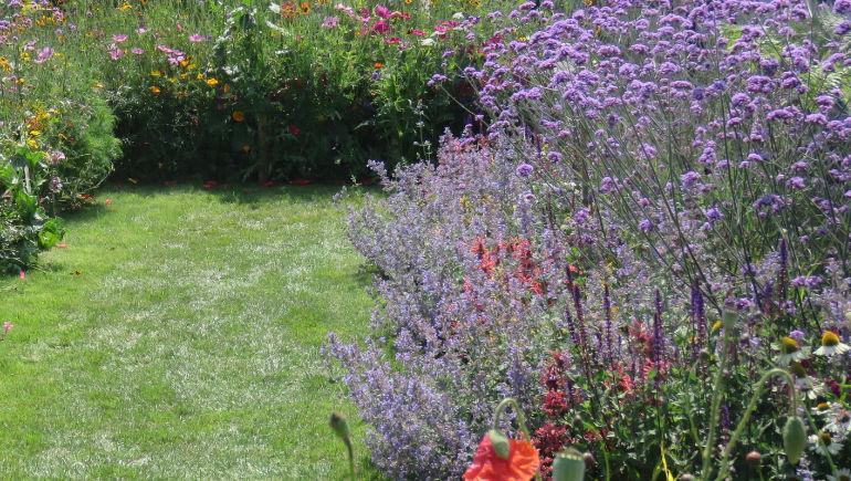 Garden delight in Wimborne raised over £4,000 for Wimborne in Bloom (image © CatchBox for illustrative purposes only)
